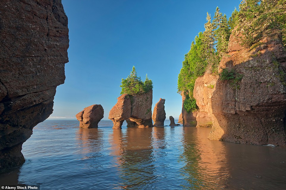 Now Canada is on the green list, head to the natural wonder that is the Bay of Fundy